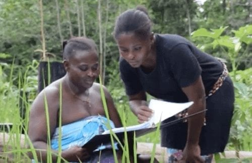 Maroon rice farmers look at researcher findings.