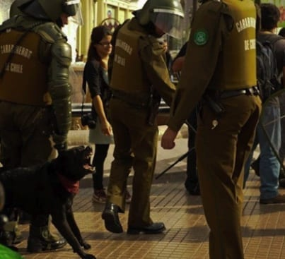 Chile El Negro Matapacos barking at police.